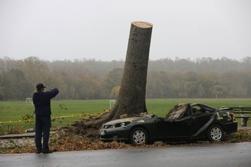 Hurricane Sandy Photograph 2
