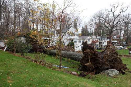 Hurricane Sandy Photograph 31